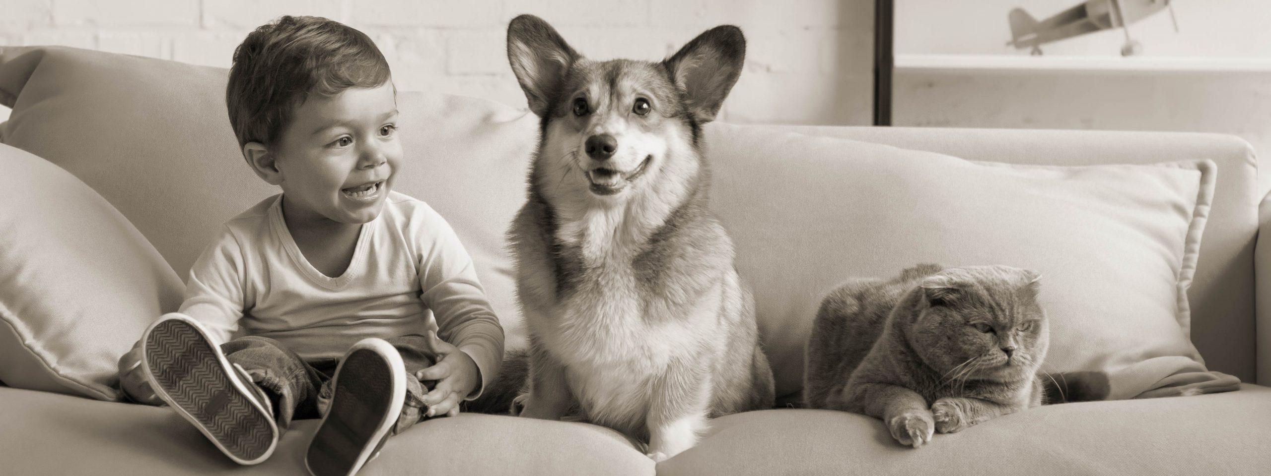 Kind, Hund und Katze liegen auf einem Sofa