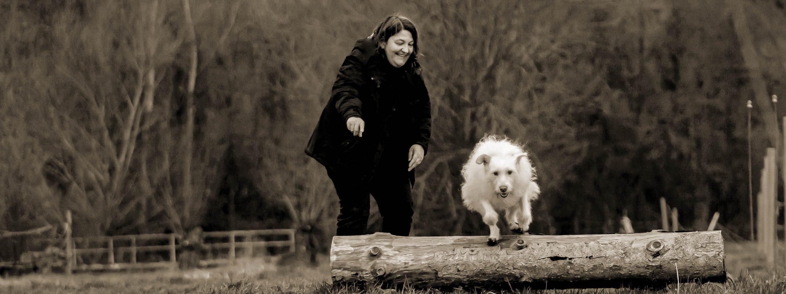 Mensch mit Hund - Hund springt über einen Baumstamm