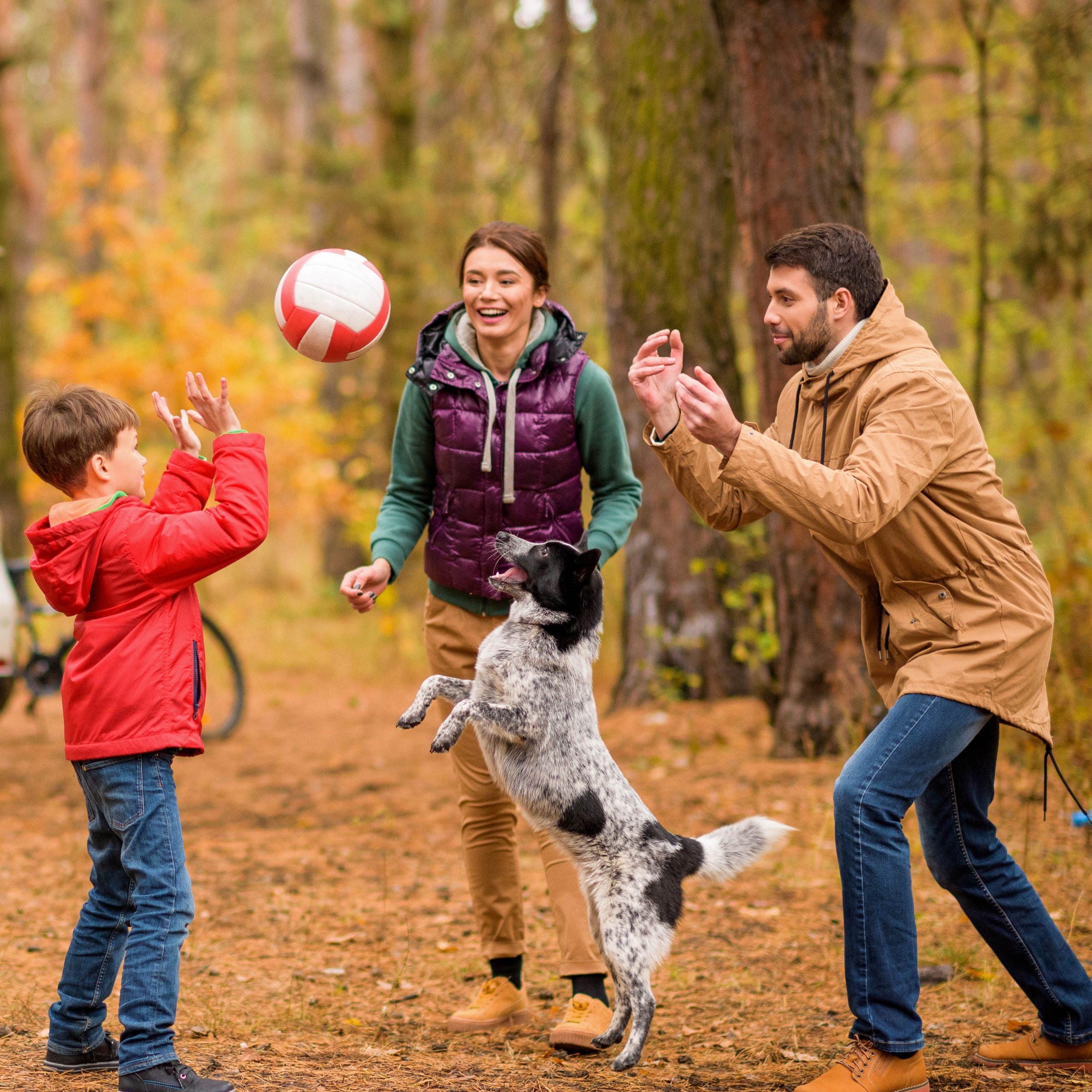 Eine Familie spielt mit ihrem Hund Ball im Wald