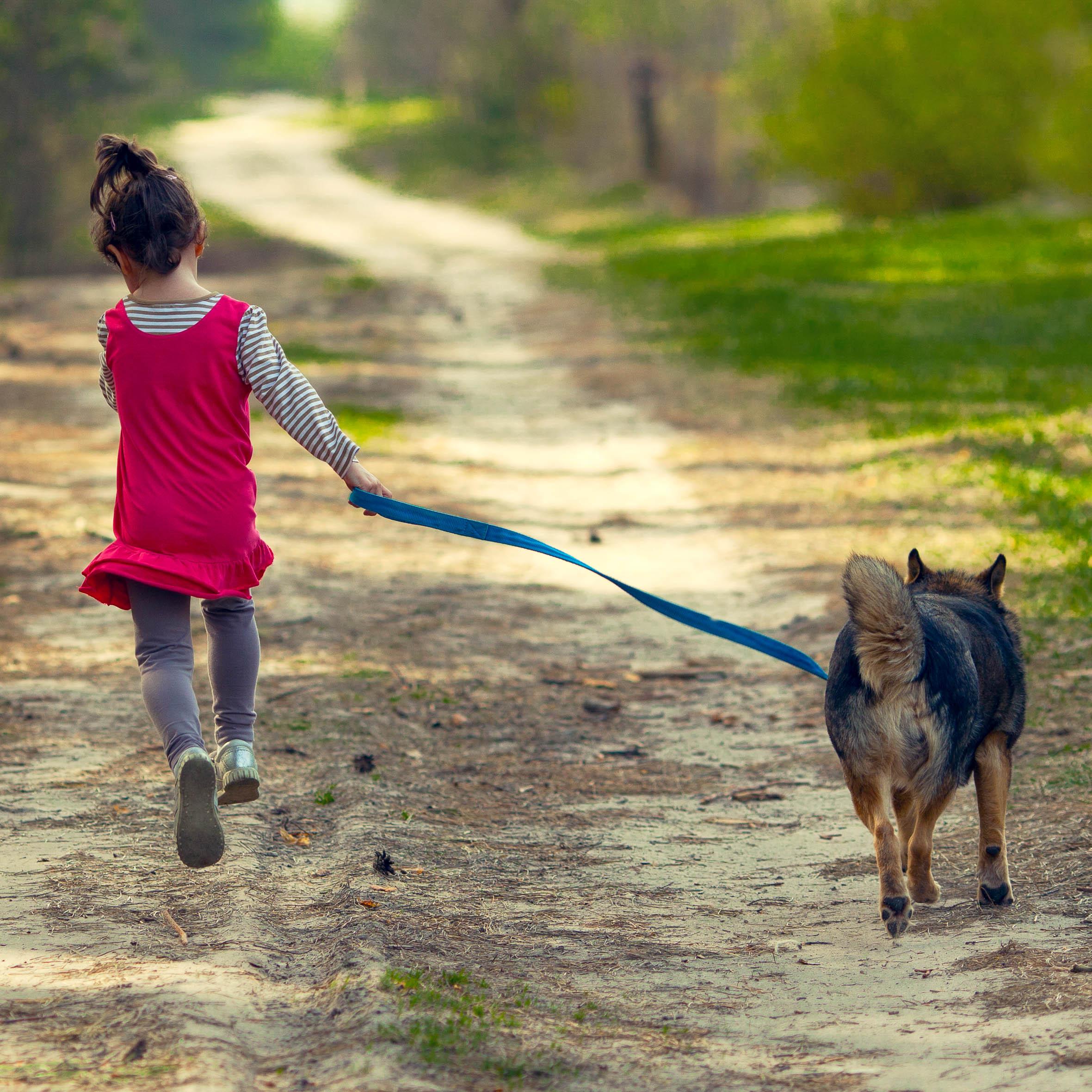 Kleines Mädchen geht freudig mit einem Hund an der Leine spazieren