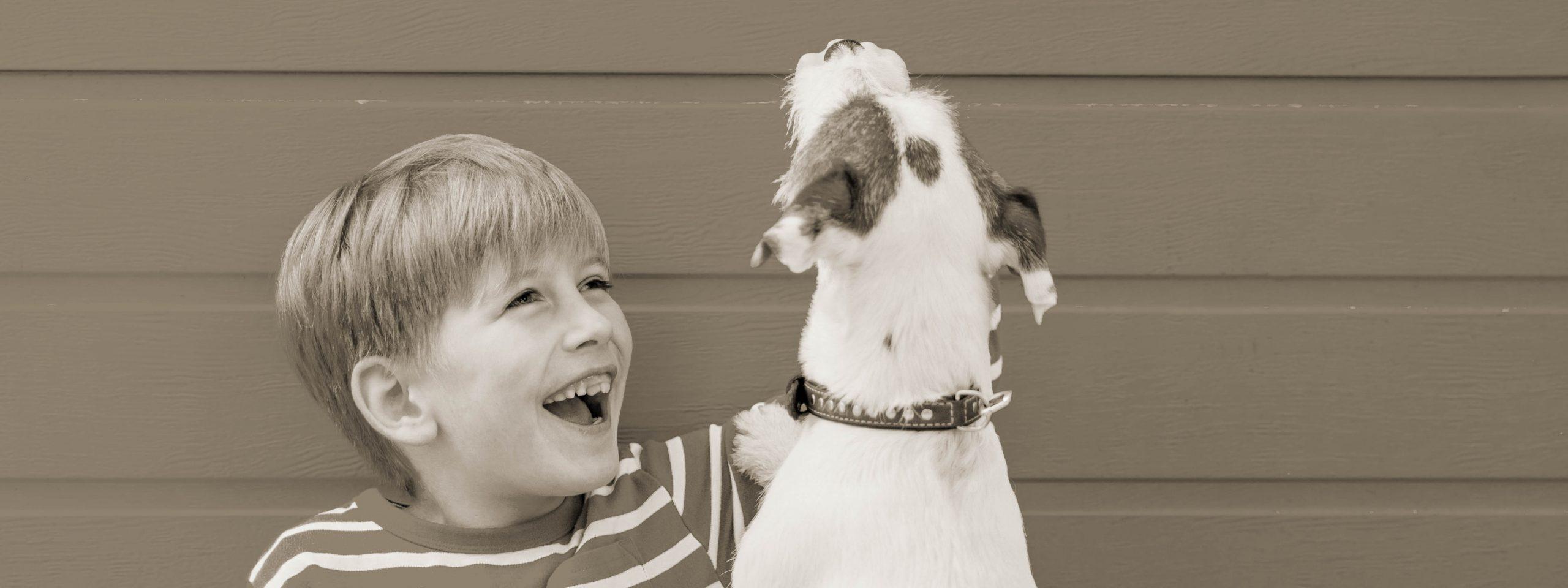 Ein Junge spielt ausgelassen mit einem Terrier