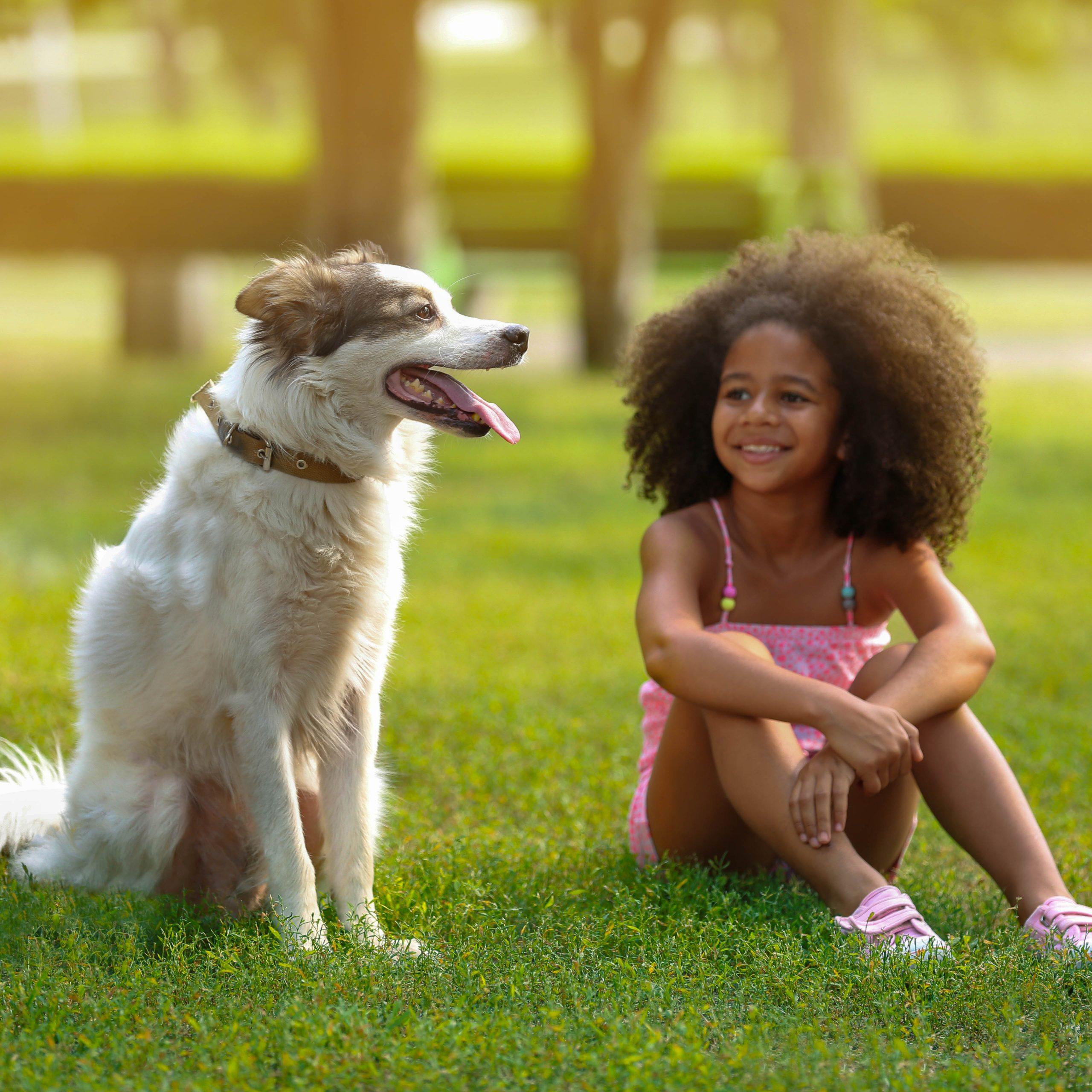 Ein Mädchen sitzt auf einer Wiese und strahlt den Hund an, der neben ihr sitzt