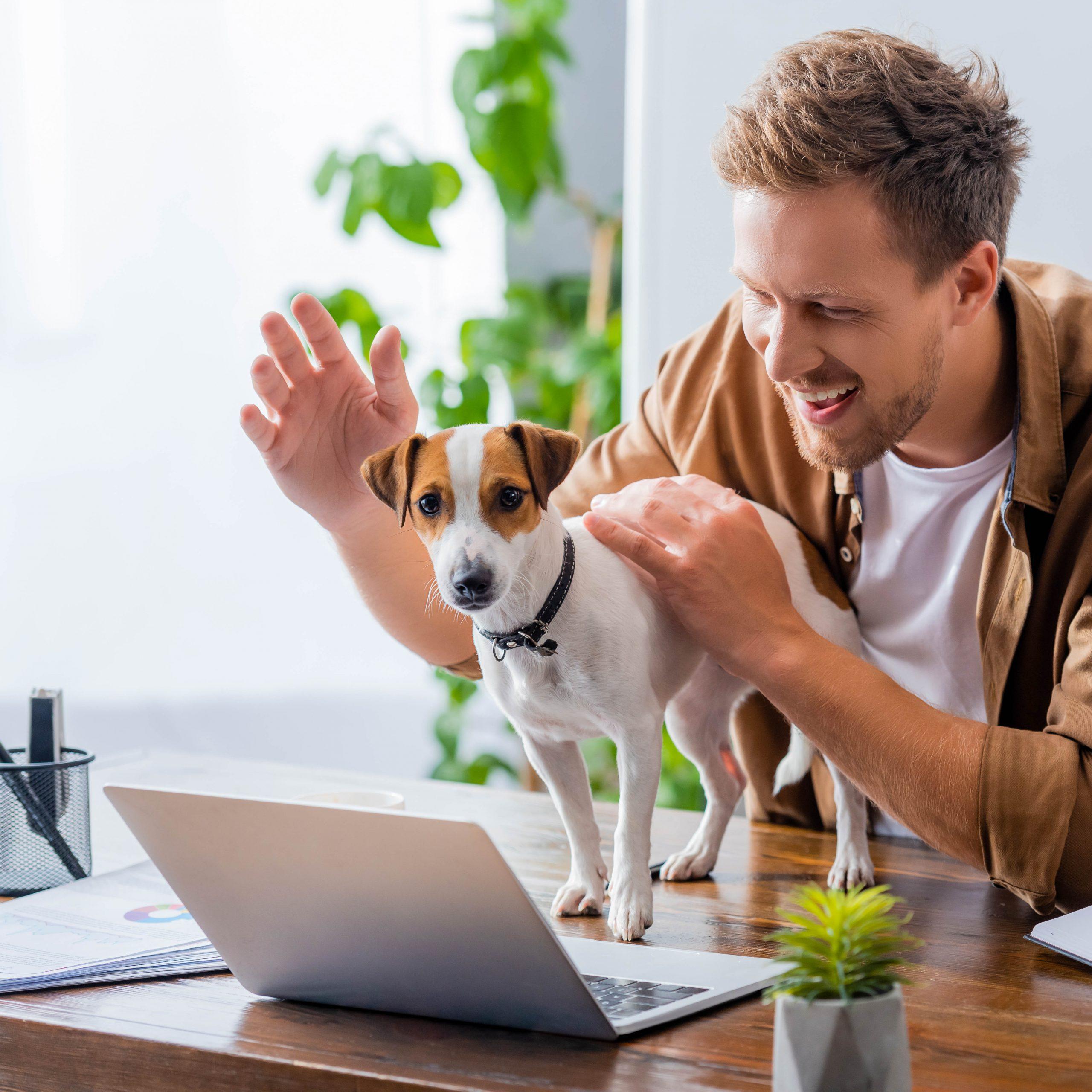 Ein Mann sitzt am Laptop der Hund ist vor ihm auf dem Tisch