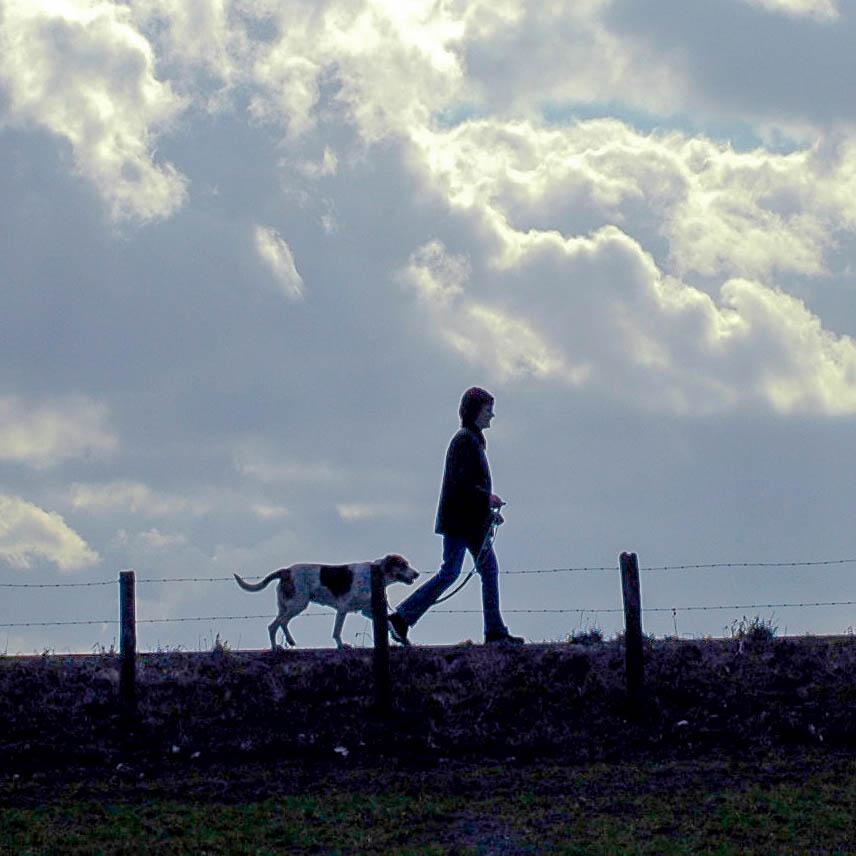 Mensch und Hund auf einem gemeinsamen Spaziergang