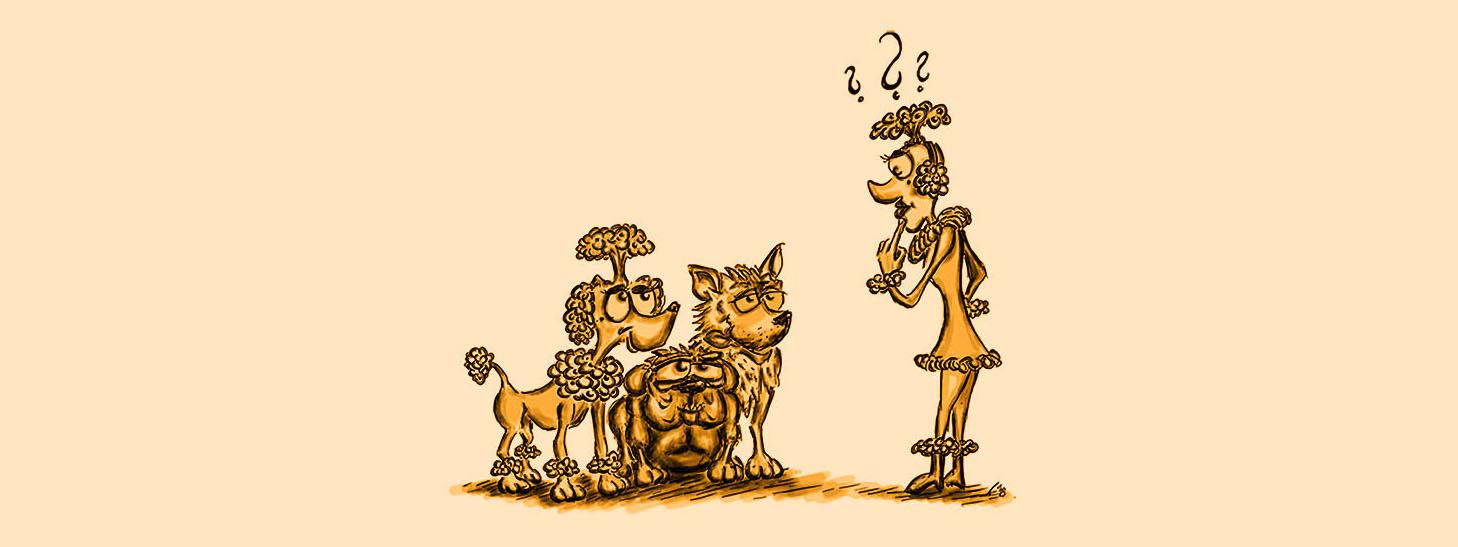 Zeichnung Frau mit Hunden